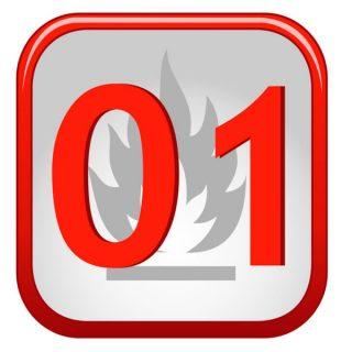 01 - пожарная служба